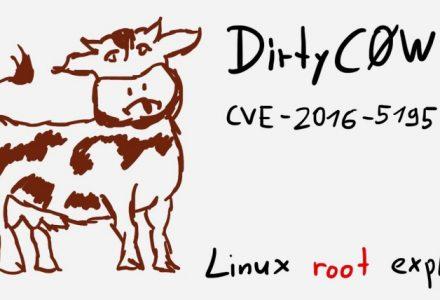 "Linux内核出现严重漏洞""脏牛"" 遭到疯狂攻击-SSL中国"