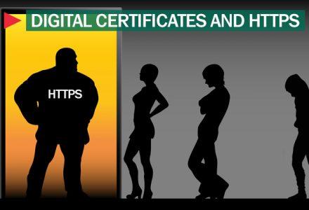 向越来越多的HTTPS致敬!-SSL信息
